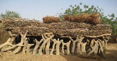 Mali Tours Mali Experience Tours African Travel Tours To Dogon Country Boat To Timbuktu Monday Market In Djenne Mopti Segou Festival Sur Le Niger Bamako Festival Du Desert Sahara Niger